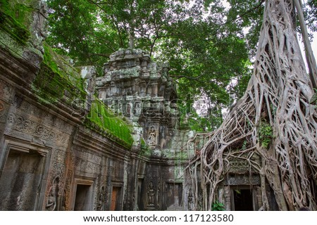 Giant tree covering the stones of Ta Prohm temple in Angkor Wat (Siem Reap, Cambodia).