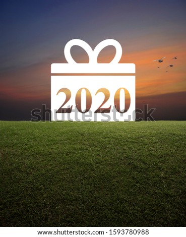 Gift box happy new year 2020 flat icon with green grass field over over sunset sky with birds, Business shopping concept