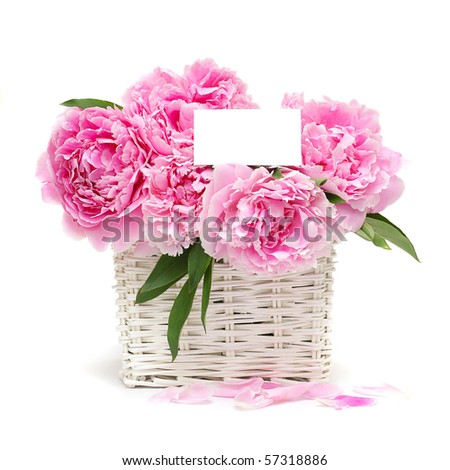 Gift. Flowers and a white blank with copy space for text - stock photo