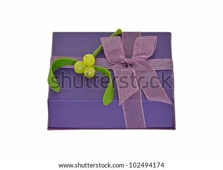 Gift With Mistletoe