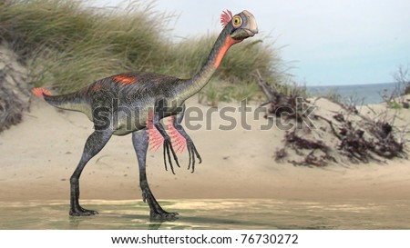 gigantoraptor on beach