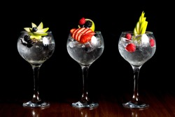 gin and tonic style tall wine glass with fresh fruit decoration garnish