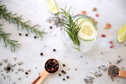 Gin Cocktail Drink with botanicals
