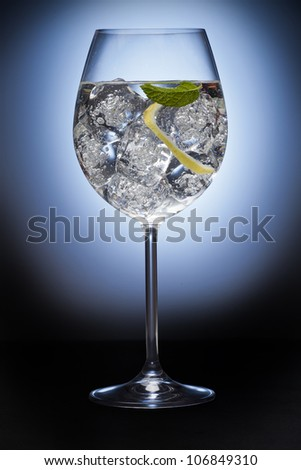 Gin tonic with lemon and ice