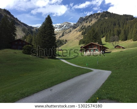 gindelwald of switzerland #1302574180