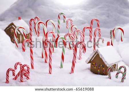 Ginger Bread Cottages in Candy Cane Forest