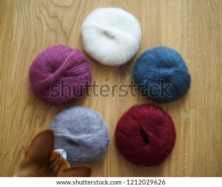 Ginger curious nose of a dog founds balls of colorful cosy mohair yarns laying on wooden background.