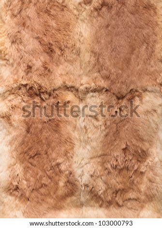 Ginger leathers of rabbits, four pieces together