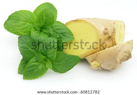 Ginger with fresh mint on a white background
