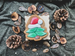 Gingerbread christmastree with dry decor fruit