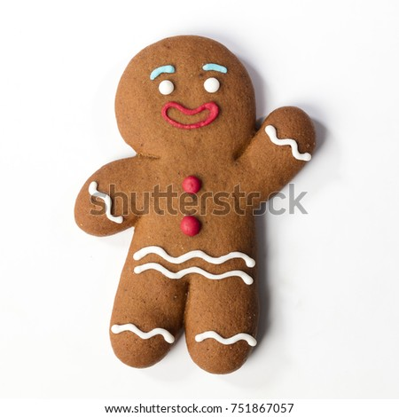 Gingerbread classic cookie hero isolated