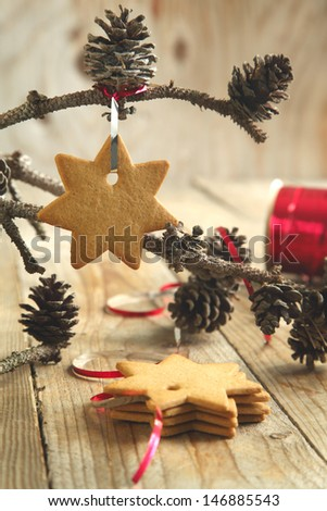 Gingerbread cookie hanging on branch with pine cones Selective