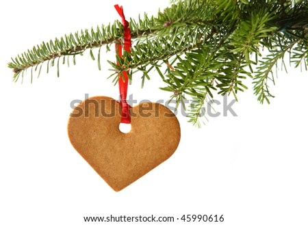 Gingerbread heart hanging under fir branch and isolated against white background