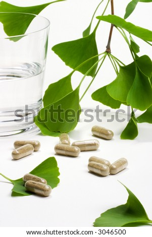 Ginkgo Biloba extract pills and fresh Ginkgo Biloba leaves with glass of water best suited for aged people alternative medicine ads