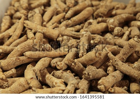 Ginseng is a kind of nutritious medicine.