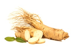 Ginseng roots on a white background