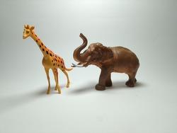 Giraffe and Elephant Plastic Toy - Miniature Plastic Toy Animals on white background