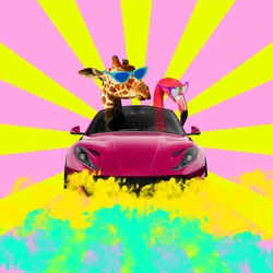 Giraffe and flamingo wearing sunglasses and driving car. Sunburst background.