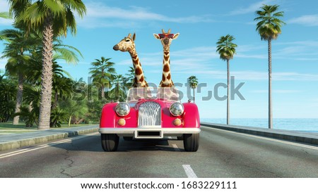 Giraffe couple in a retro car . Safari trip concept . This is a 3d render illustration .  Stock photo ©