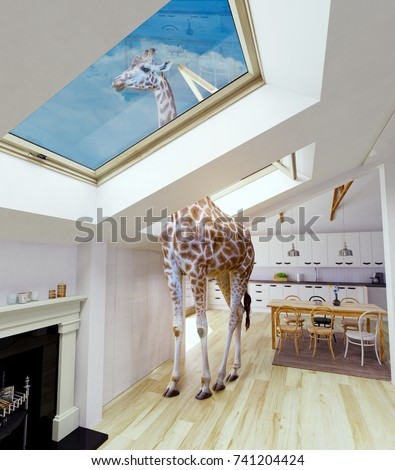 Giraffe looks out into the attic window. 3d rendering and photo  mixed concept.