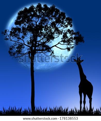 giraffe on grass with big tree and big blue moon
