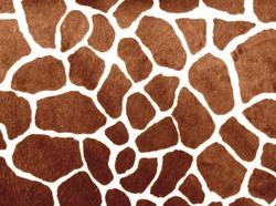 Giraffe print for background