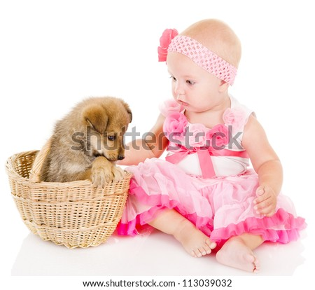 girl and puppy. isolated on white background
