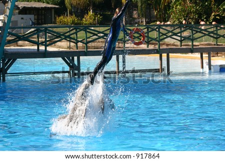 girl being pushed up out of the water by two dolphins