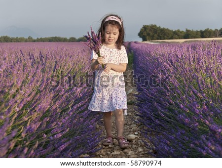 Girl collecting flowers in a lavender field