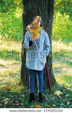 girl covers her face with oak branches. Woman covers her face with dry yellow oak leaf in autumn forest. autumn portrait in the park. girl in a gray coat. a red umbrella stands by a big oak #1193201164