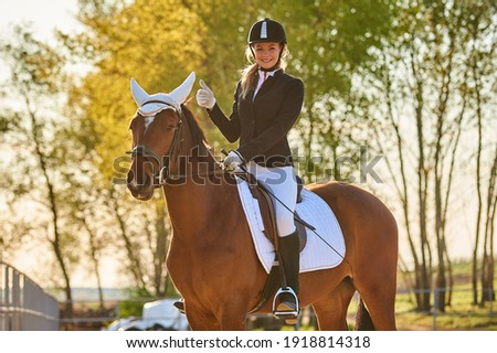 Girl equestrian rider riding a beautiful horse  in the rays of the setting sun. Horse theme  Foto stock ©