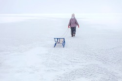 Girl have fun on the frozen lake and enjoying a sleigh ride. Winter, silence and wild nature, active winter weekend, seasonal outdoor activities, back view, selective focus, copy space