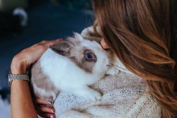 Girl hugs a cute white rabbit at home.a girl with a rabbit, bunny pet.close up hands girl cuddling a lop-eared white rabbit against her on studio