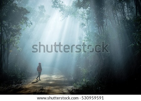 Girl in sun rays coming through the trees in forest #530959591