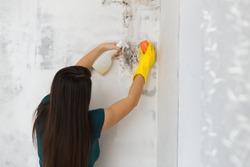girl kills mold at home