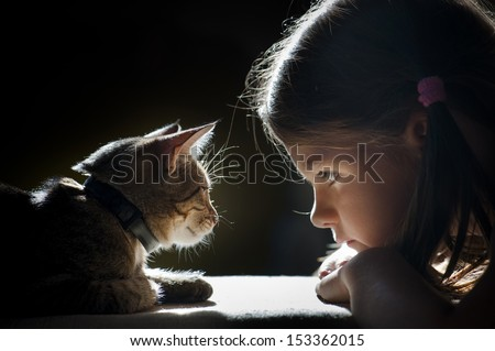 girl looking at the cat #153362015