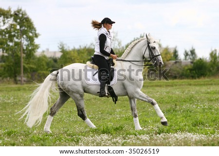 girl on a white horse