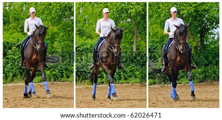 Girl on dressage horse doing half pass