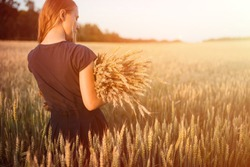 girl on the field. Russian beauty. girl holds ears of corn in her hands. harvest. autumn. harvesting. Wheat field