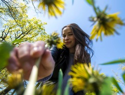 Girl picking dandelion flower in field of grass, low angle of flower stem being picked by beautiful young energetic girl, spring/summer colors, flower field, fun in the park and nature, POV ground