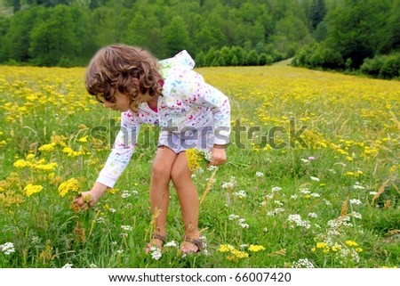 Girl picking flowers in yellow spring meadow beautiful scenic in Pyrenees spain