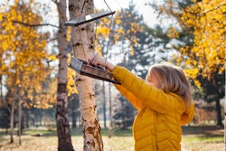 Girl putting food for birds at birdhouse in the forest on warm autumn day. Children taking care of animals outdoor. Outdoor recreation and awesome adventures with kids in fall