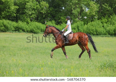 Girl rider trains the horse in the riding course