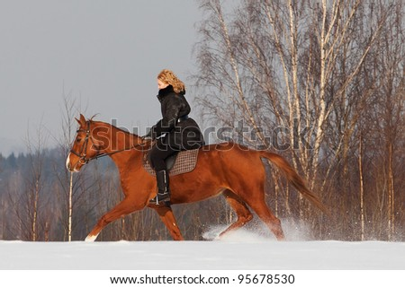 Girl riding Russian Don horse at winter day