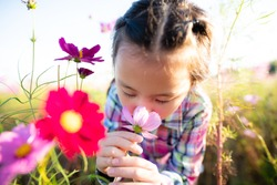 Girl smell the fragrance of flowers in the flower garden