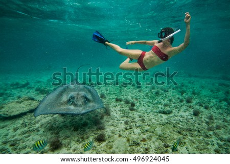 Girl snorkeling with a stingray, Sea life in Caribbean Waters