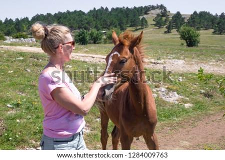 girl strokes foal #1284009763