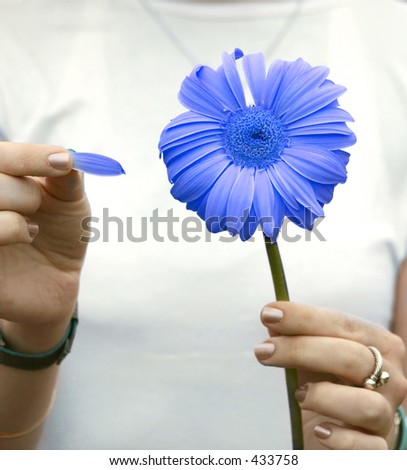 girl taking the petals off the flower one by one - stock photo