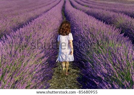 Girl walking away in a field of lavender