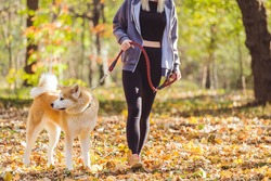 Girl walking in park with her dog